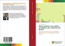 Bookcover of Boas práticas na cadeia produtiva da castanha do Brasil