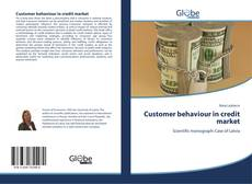 Buchcover von Customer behaviour in credit market