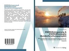 Bookcover of ENERGIEeinsparung & ENERGIEkonzepte (Bundesforschungsprojekt)