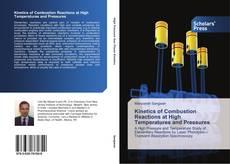 Borítókép a  Kinetics of Combustion Reactions at High Temperatures and Pressures - hoz