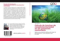 Cálculo de brechas de complementariedad en los proyectos sostenibles的封面
