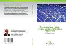 Bookcover of Специальные главы теории металлургических процессов