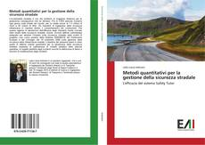 Copertina di Metodi quantitativi per la gestione della sicurezza stradale
