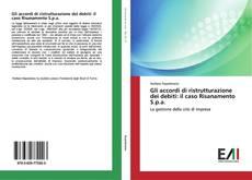Copertina di Gli accordi di ristrutturazione dei debiti: il caso Risanamento S.p.a.