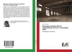 Bookcover of Recupero urbano del ex-cementificio S.A.C.C.I. Corsalone (AR)