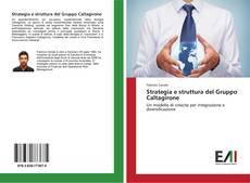 Couverture de Strategia e struttura del Gruppo Caltagirone