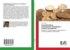 Crowdfunding: innovazione, tecnologia e aspetti manageriali kitap kapağı