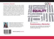 Capa do livro de Feminismo y Derecho