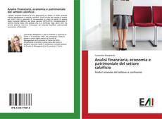 Обложка Analisi finanziaria, economia e patrimoniale del settore calzificio
