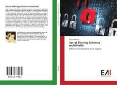 Copertina di Secret Sharing Schemes multilivello