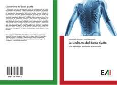 Capa do livro de La sindrome del dorso piatto
