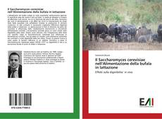 Bookcover of Il Saccharomyces cerevisiae nell'Alimentazione della bufala in lattazione