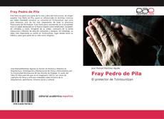 Buchcover von Fray Pedro de Pila