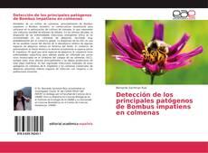 Portada del libro de Detección de los principales patógenos de Bombus impatiens en colmenas