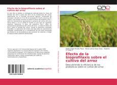Bookcover of Efecto de la bioprofilaxis sobre el cultivo del arroz