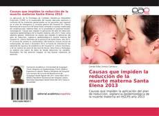 Causas que impiden la reducción de la muerte materna Santa Elena 2013的封面
