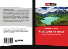 Bookcover of Я вышел из леса