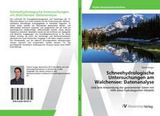 Capa do livro de Schneehydrologische Untersuchungen am Walchensee: Datenanalyse