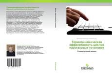 Термодинамическая эффективность циклов парогазовых установок kitap kapağı