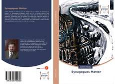 Capa do livro de Synagogues Matter