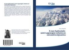 Обложка A non-hydrostatic semi-Lagrangian scheme on convective dynamics