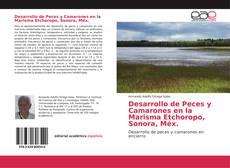 Portada del libro de Desarrollo de Peces y Camarones en la Marisma Etchoropo, Sonora, Méx.