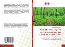 Buchcover von Evaluation des impacts environnementaux des projets par modélisation