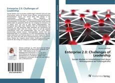 Enterprise 2.0: Challenges of Leadership的封面