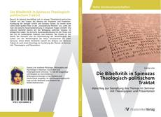 Bookcover of Die Bibelkritik in Spinozas Theologisch-politischem Traktat