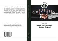 Buchcover von Kamu İdarelerinde İç Kontrol Sistemi