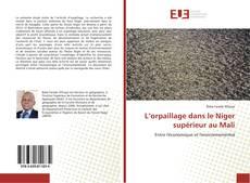 Borítókép a  L'orpaillage dans le Niger supérieur au Mali - hoz