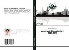 Ankara'da Havuzbaşları: 1923-1950 kitap kapağı