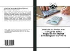 Türkiye'de Banka Müşterilerinin İnternet Bankacılığına Yaklaşımları kitap kapağı