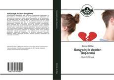 Sosyolojik Açıdan Boşanma kitap kapağı