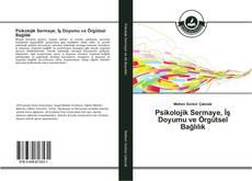 Bookcover of Psikolojik Sermaye, İş Doyumu ve Örgütsel Bağlılık