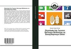 Borítókép a  Diyarbakır'da Tarımın Sermaye Birikimine ve Sanayileşmeye Etkisi - hoz