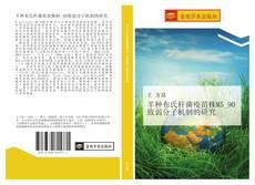 羊种布氏杆菌疫苗株M5_90致弱分子机制的研究的封面