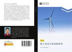 Capa do livro de 海上风电开发风险研究