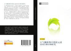 Capa do livro de 大气颗粒物中的轻元素XANES和SPM研究