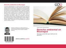 Copertina di Derecho ambiental en Nicaragua