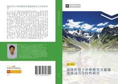 Portada del libro de 强扰作用下砂堆模型及崩塌滑坡动力学特性研究