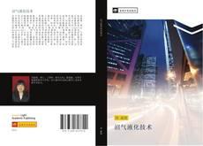 Bookcover of 沼气液化技术