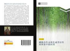 磷酸改性木屑在成型活性炭制备中的应用的封面