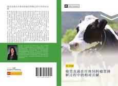Bookcover of 瘤胃真菌在纤维饲料瘤胃降解过程中的相对贡献