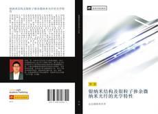 Bookcover of 银纳米结构及银粒子掺杂微纳米光纤的光学特性
