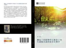 Bookcover of 濒危兰科植物华石斛基于内生菌根真菌的保育生物学