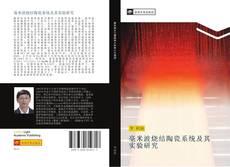 Portada del libro de 毫米波烧结陶瓷系统及其实验研究