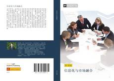 信息化与市场融合 kitap kapağı