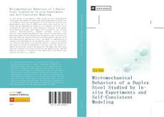 Bookcover of Micromechanical Behaviors of a Duplex Steel Studied by In-situ Experiments and Self-Consistent Modeling