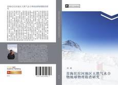 青海沱沱河地区天然气水合物地球物理勘查研究的封面